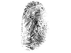 fignerprint-257037-300x225
